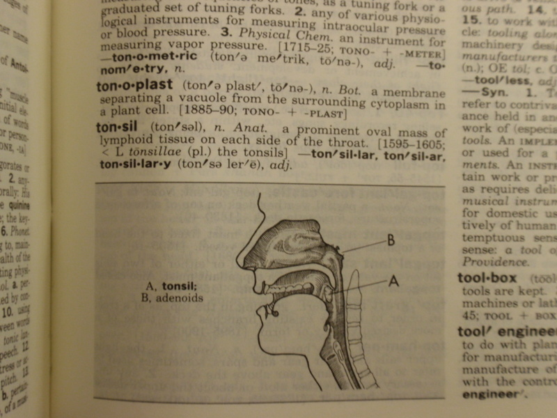 Tonsils_2